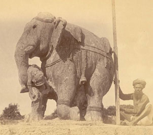 Old Photo of Konark Elephant
